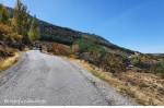 asfaltka/road walk